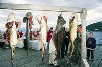 Трёнделаг, рыбалка в Норвегии.