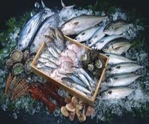 Россияне проверят рыбообрабатывающие предприятия Норвегии